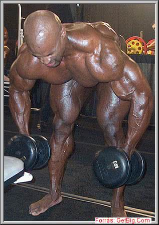 Mr. Olympia 2002, Ronnie Coleman