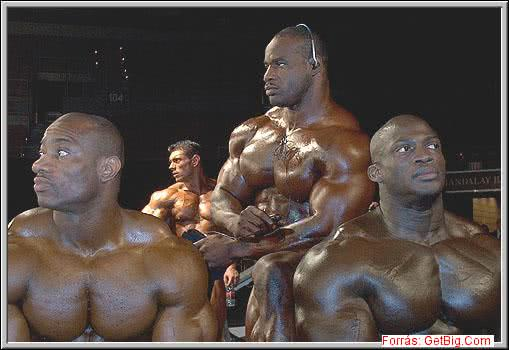 Mr. Olympia 2002, Chris Cormier