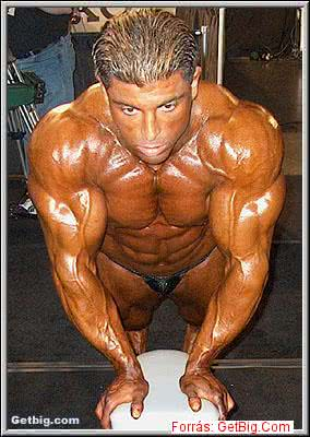 Mr. Olympia 2002, King Kamali
