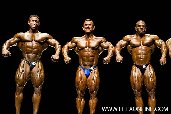 Ironman 2006, Troy Alves, Lee Priest, David Henry