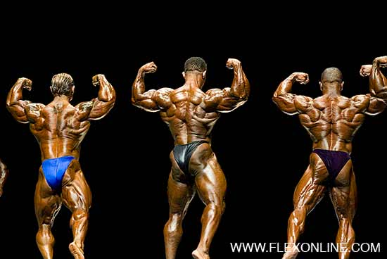 Ironman 2006, Lee Priest, Troy Alves, David Henry