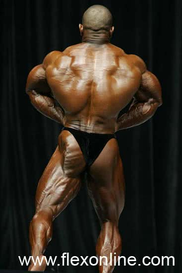 Mr. Olympia 2006, Dave Henry