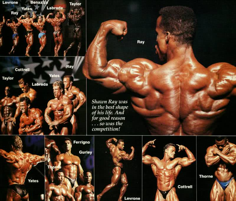 Mr. Olympia 1992 - Helsinki, Kevin Levrone, Shawn Ray, Dorian Yates, Lee Labrada, Vince Taylor, Porter Cottrell, Henderson Thorne, Lou Ferrigno, Mohamed Benazizza