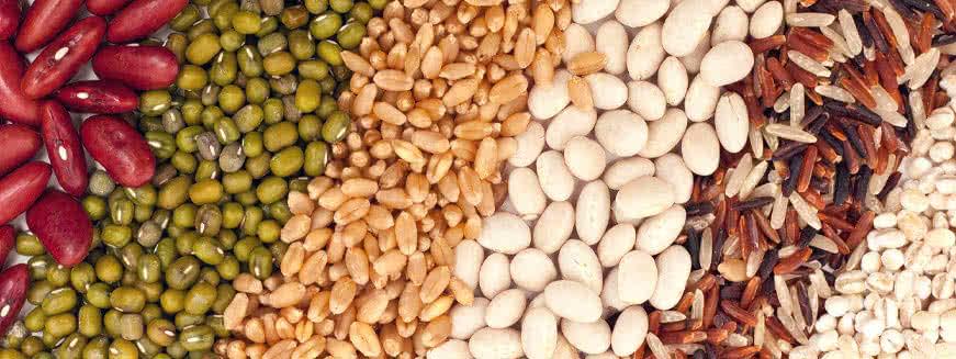 A növényi fehérjeforrások aminosav profilja nem teljes
