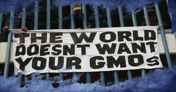 Nem akarunk GMOs termékeket!