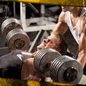 Building shredded muscle? Mix the right protein–carbohydrate ratio into your shake!