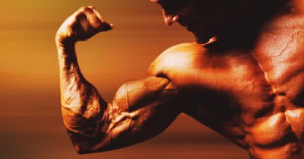 Foszfatidsav - erő és teljesítmény