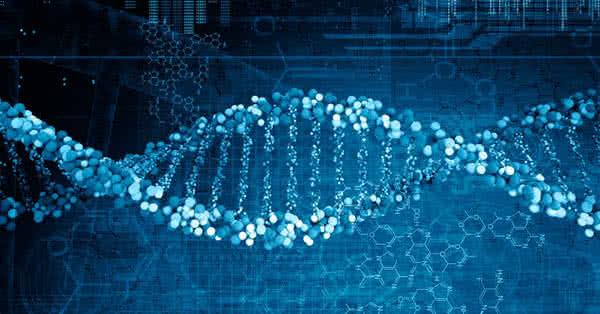 A genetika emlegetése vállvonás.