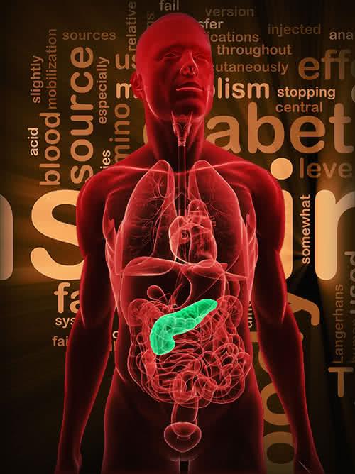 Innen jön az inzulin