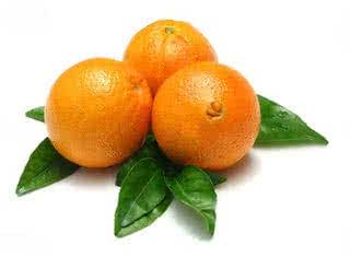 A citrusgyümölcsök leginkább C-vitamin forrásként élnek a köztudatban.
