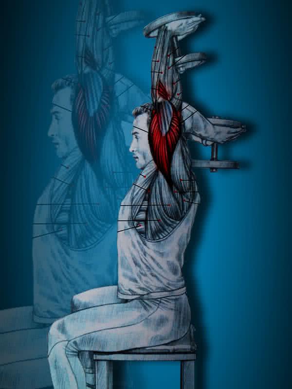 Tricepsznyújtás ülve, két kézzel