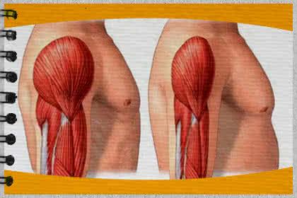 20 tipp a zsírégetésre