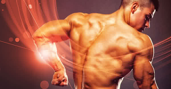Are your triceps lagging behind? We'll show you how to bring them up!