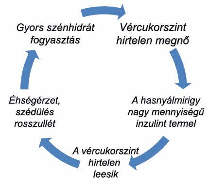 Az elfogyasztott gyors szénhidrátok, az inzulin, és a vércukorszint kapcsolata
